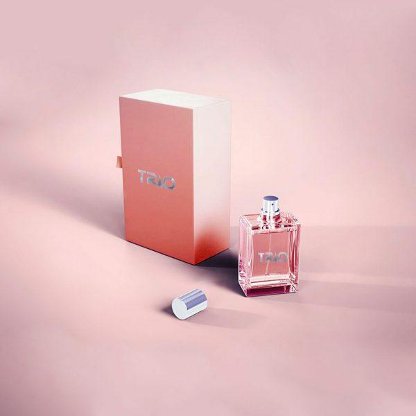 parfüm kutuları matbaa, baskı ve tasarımları